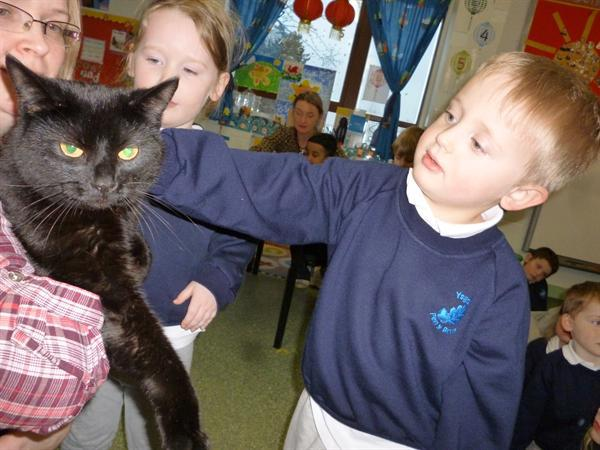Sid the cat comes to visit!