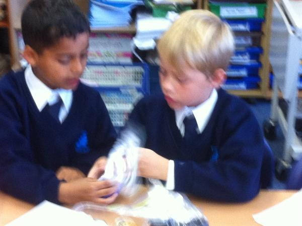 In Science we are learning about rocks and soils.