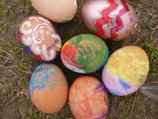 Eggxellent eggs!!
