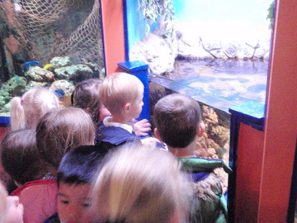 SeaQuarium, Trip