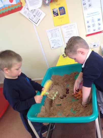 playing with conkers in the sand
