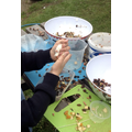 Making bird feeders in time for the cold weather.