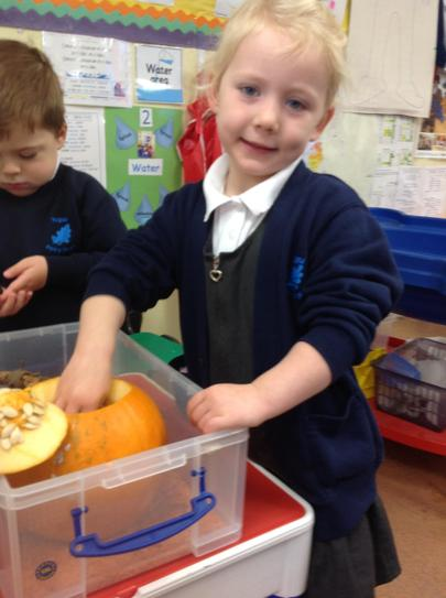 we felt inside the slimey pumpkin
