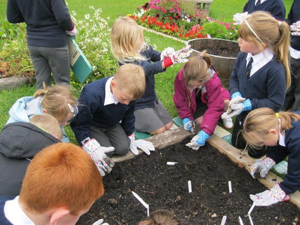 We washed our hands after our gardening work.