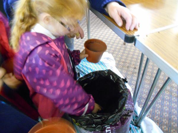 Planting bulbs for the elderly