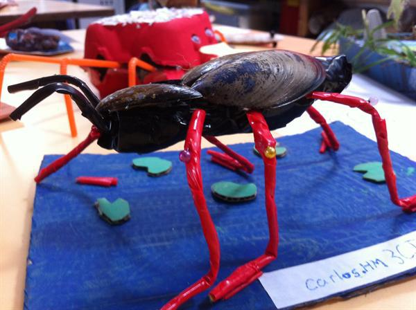 Pond creatures-our creations
