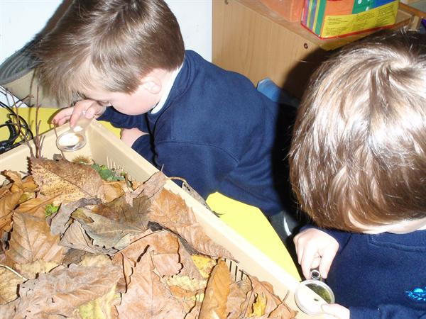 Looking closely at our treasures.