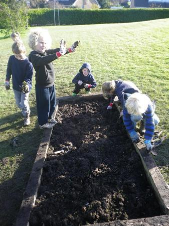 Weeding our garden