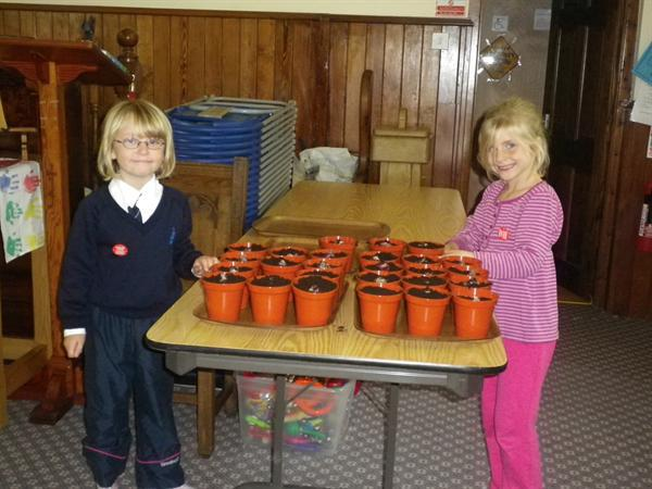 We have planted bulbs ready for the Spring.
