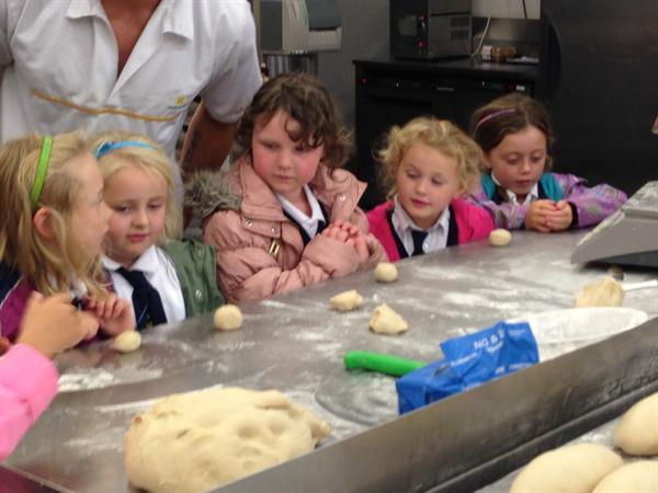 Making rolls from the dough
