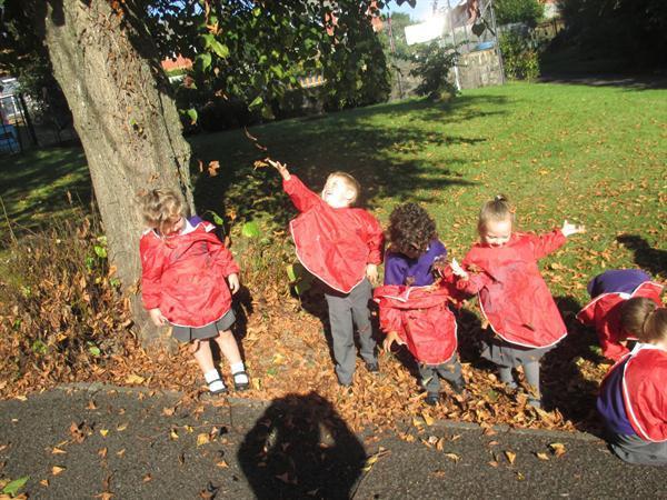 Hwyl yr Hydref / Autumn fun