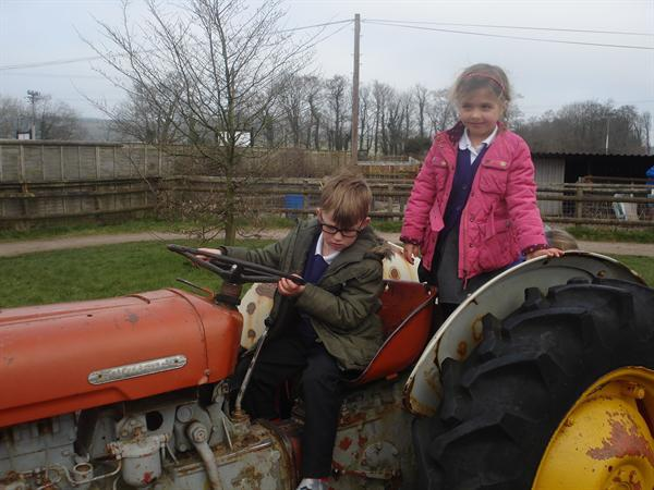 Ar y Fferm/On the Farm