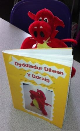 Dilwen Y Ddraig - GWYBODAETH / INFORMATION