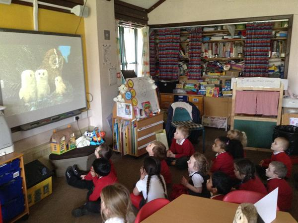 Owl Babies-listening to the story!