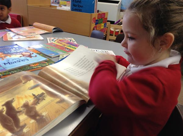 Investigating Books