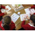 Roll and colour fractions game