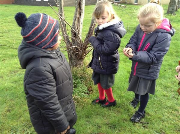 Collecting our objects outdoors.