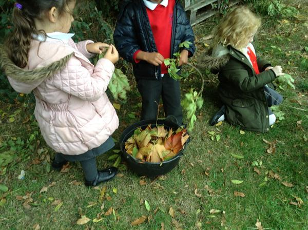 Miss Vicci's Gardening Group