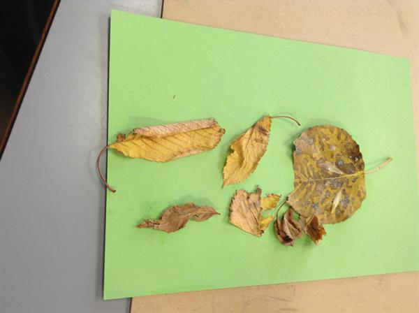 Leaf pictures and Terrifying Monsters