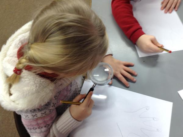 Drawing and labelling our hands.