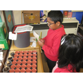 Following instructions to plant cress seeds