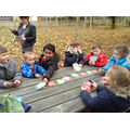 Counting in Forest School