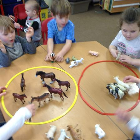 Reception- sorting the farm animals.