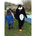 A visit from a penguin!