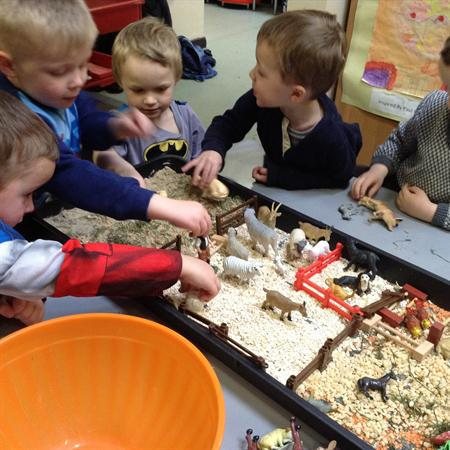 We sorted the animals into lots of groups