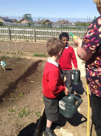 Gardening with Miss Vicci