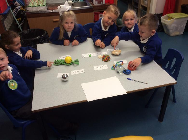 Sorting materials into groups