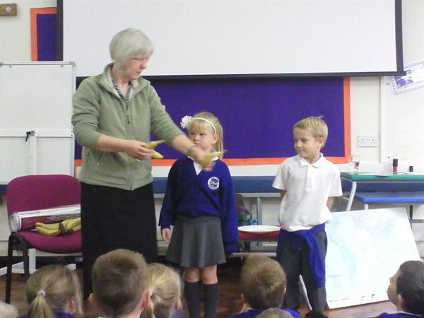 Learning about Fairtrade.