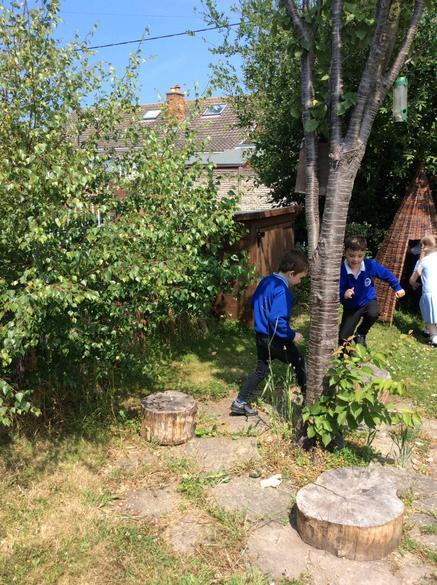 Looking for mini-beasts in the school garden!