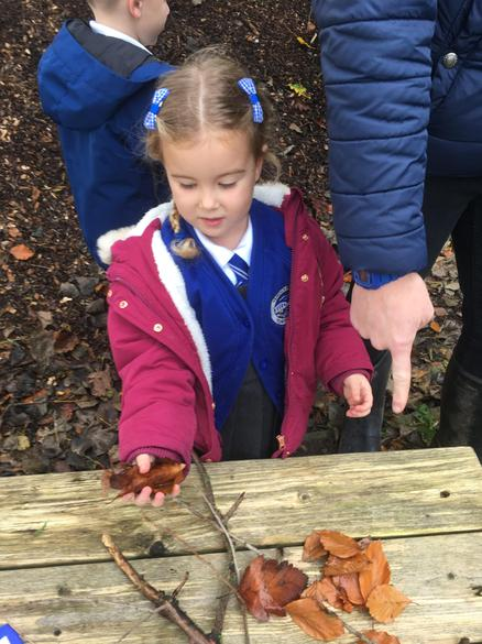 Collecting a specific number of sticks.