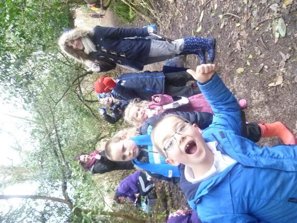 Woodland Week