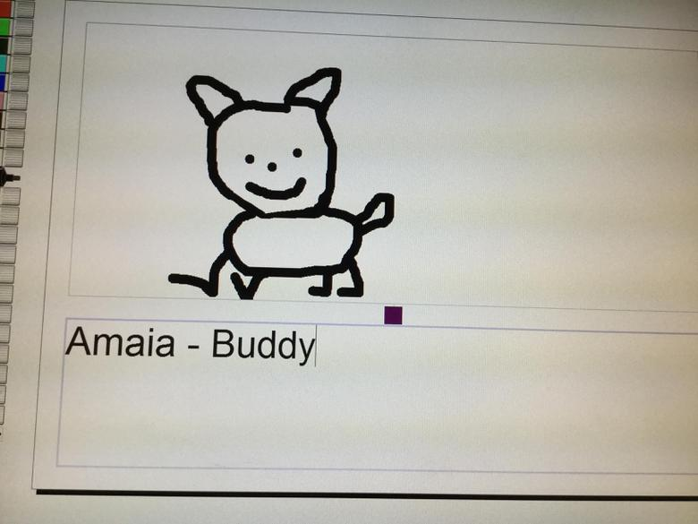 We worked on 2simple2Publish to draw our pets