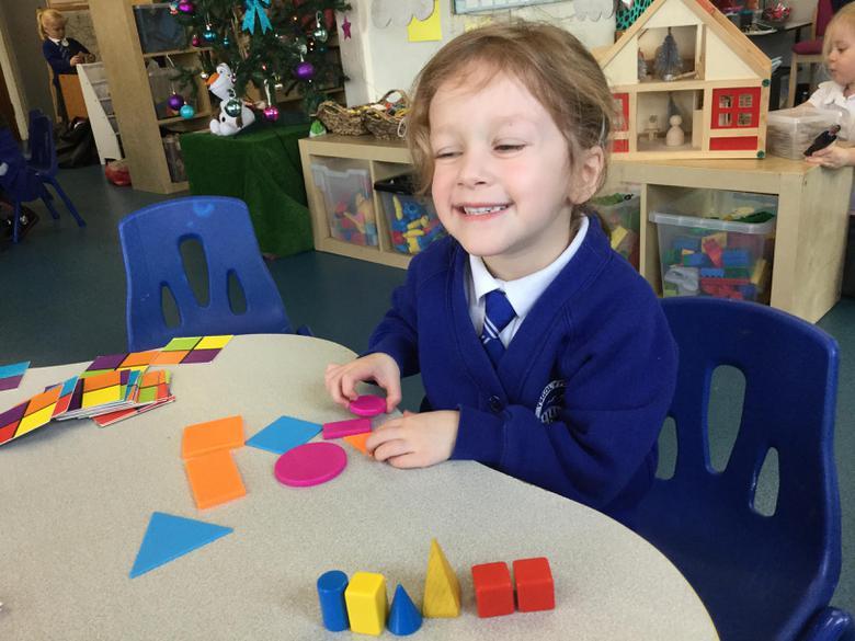 I can sort 2D shapes and 3D shapes