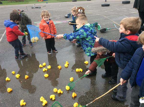 Rescuing the Ducks - Numeracy