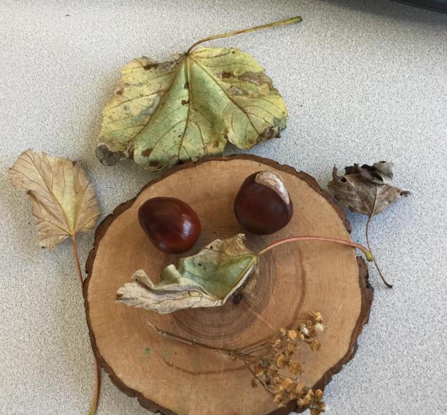 We made our faces with things we collected