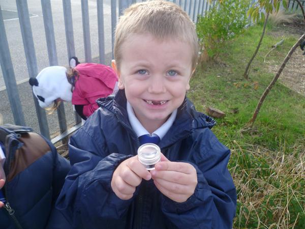 November - Joshua on a minibeast hunt