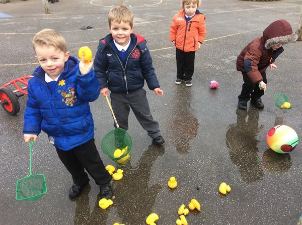 Rescuing the Ducks - Numeracy 2