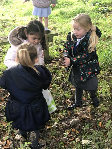 Collecting leaves and sticks to take back to class