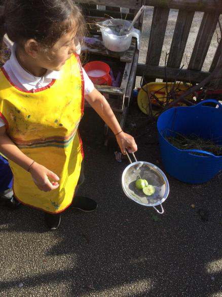 Sieving the apple