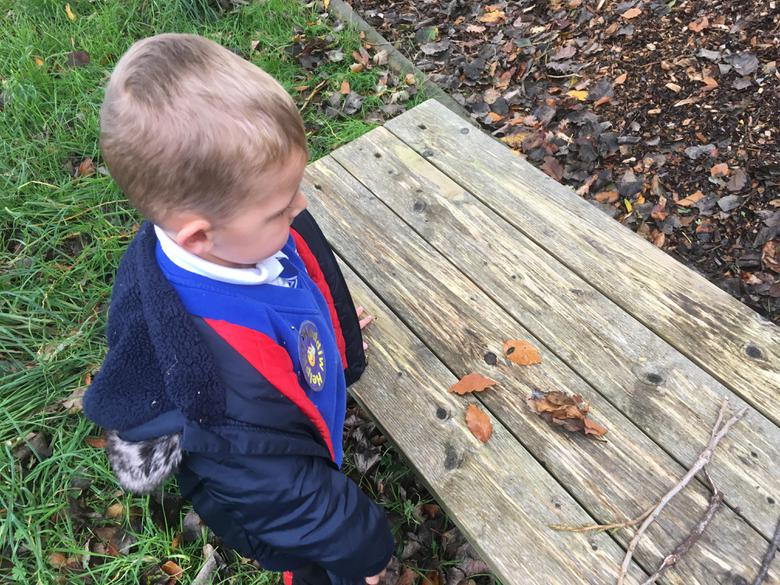 Collecting a specific number of leaves.