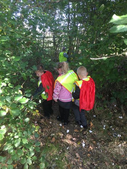 Into  the woodland area we go...
