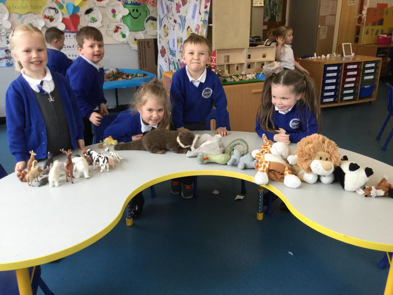 We sorted the cuddly toys and the plastic ones.