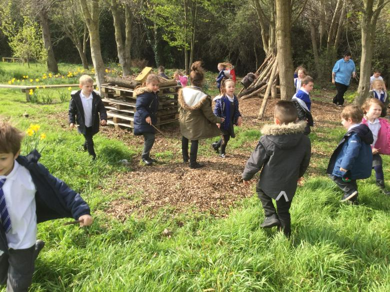 We needed sticks and twigs for our eco garden