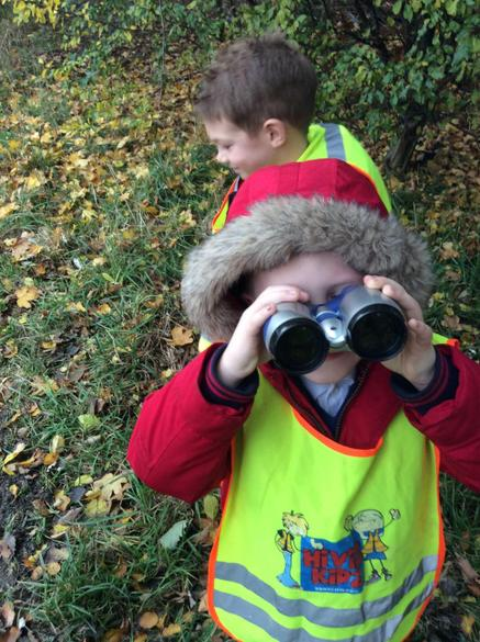 What did we see on our woodland walk?