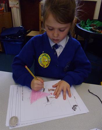 Dec 2013 - 'Design & Make a Puppet'