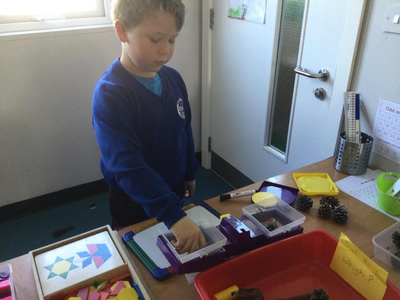 We then found and weighed different things around the classroom